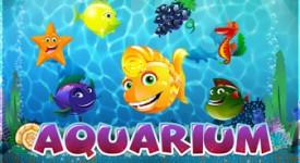 sloturi Aquarium