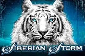 logo siberian storm gratis