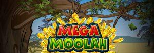 castig mega moolah 2019