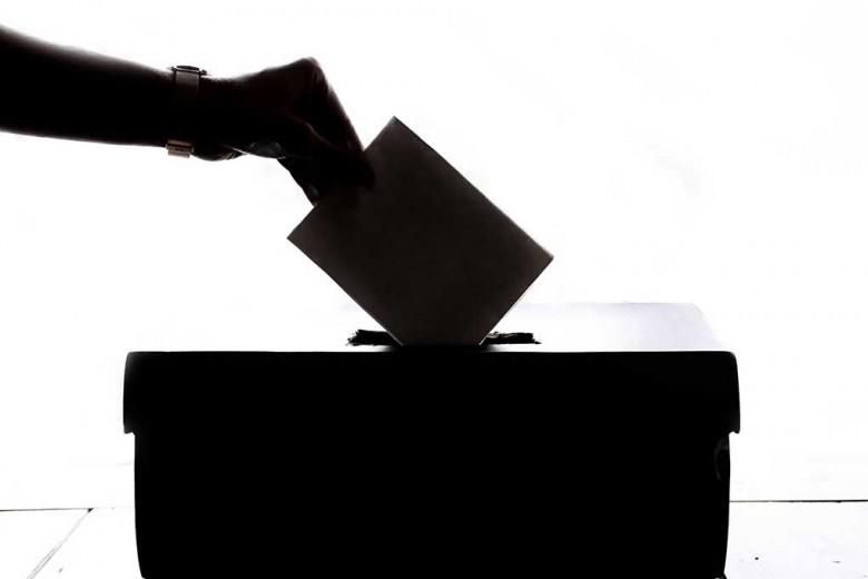 pariuri alegeri 2020 maxbet