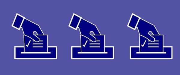 alegeri locale constanta vote