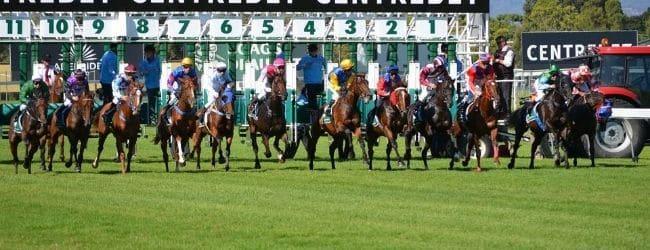 baumbet bonus pariuri curse cai