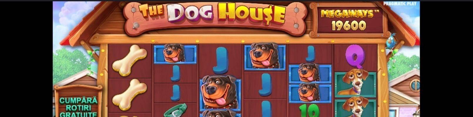 jucatori incepatori la casino dog house