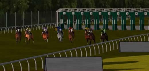 curse cai virtuale