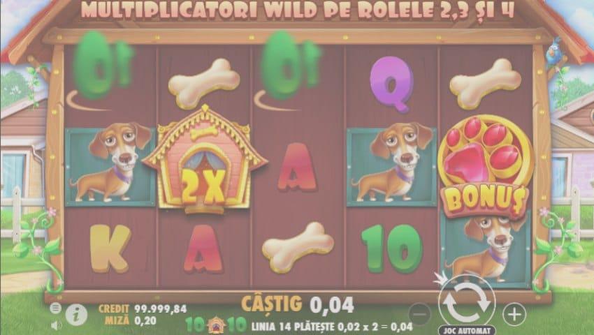 dog house online gratis ecran joc