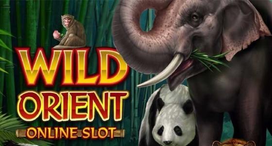 wild orient gratis logo 2021